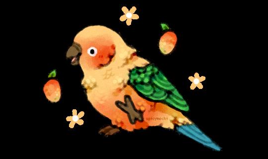 yo it's a mango