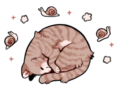 snail pose