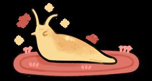 slug on a rug