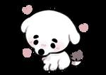 kk slider but puppy