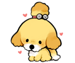 isabelle but puppy