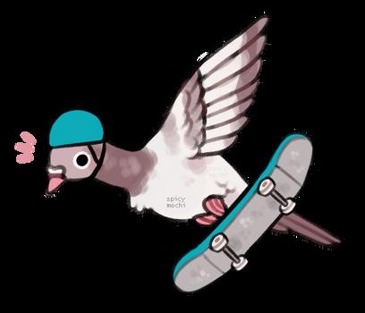 skatebirder