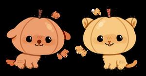 pupkin and pumpkitty