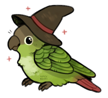 wizard bird