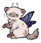 fairy feline