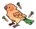 carrot parrot