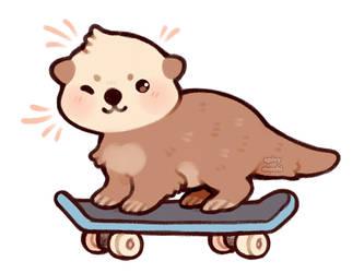 skater otter