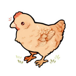 hen friend