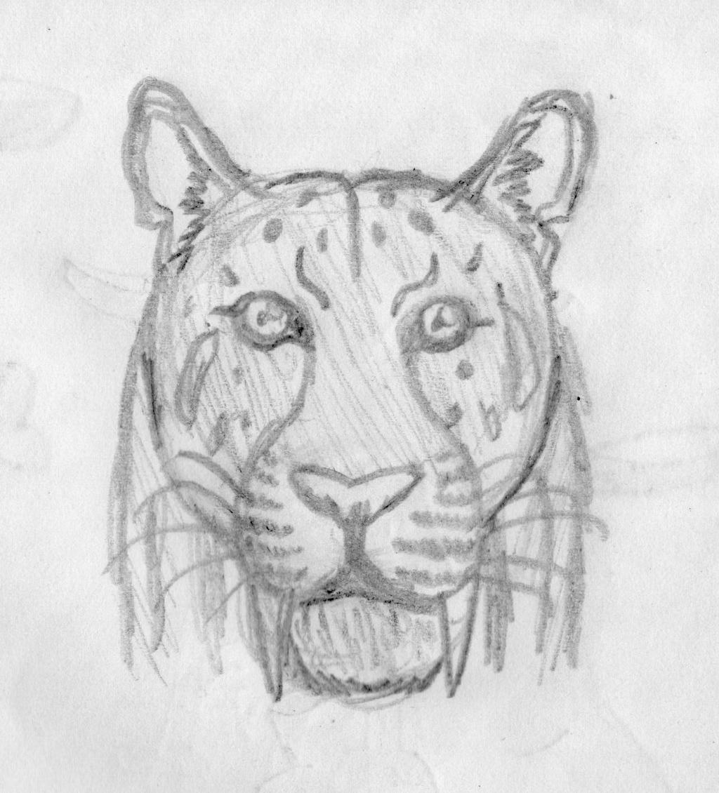 Smilodon Face By Pyroraptor42 On DeviantArt