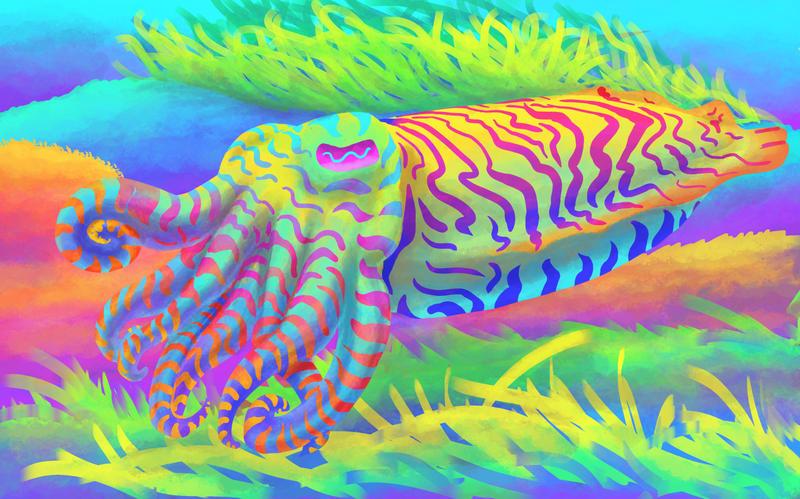 Cuddlefish by Phatmouse09