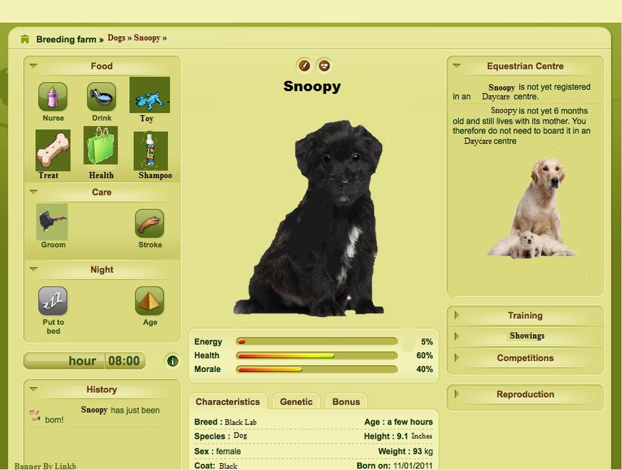 Dog Games Online Virtual Pet