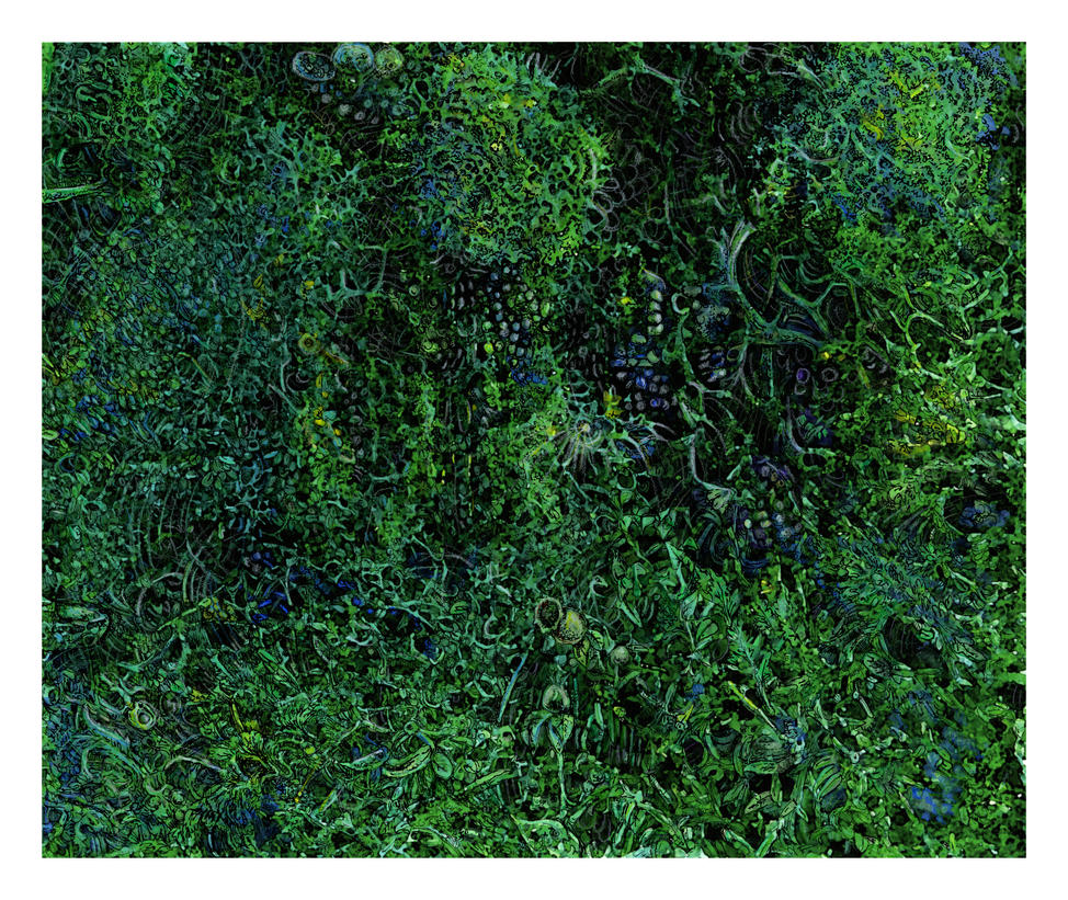 The Lichen Jungle by JoeMacGown