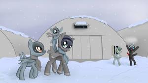 Winter in Avalon
