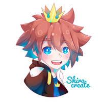 Sora - Kingdom Hearts by Shirocreate