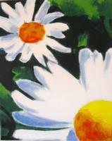 daisy by misshoneywoo