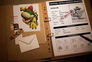 Top Secret Files: Koopa Kid
