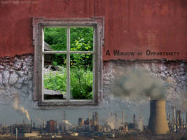A Window of Opportunity by JuneEggComfort