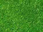 Seamless Green Grass Texture by FreeBackgroundWeb