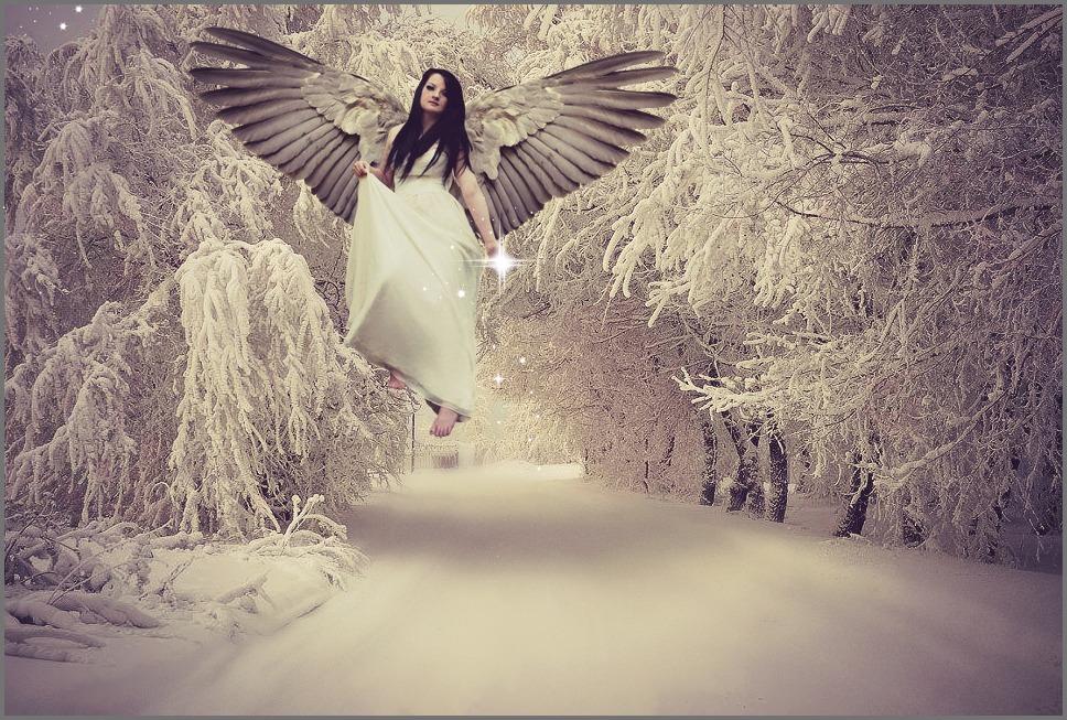 Winter Stars by sarahredhead