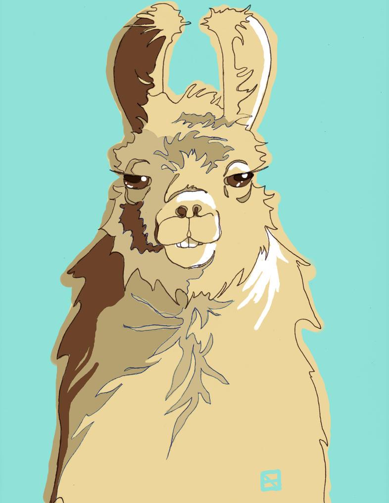 Llama by SentWest