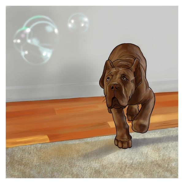 Dog by SentWest