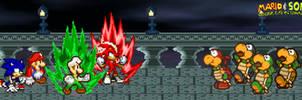Fire Luigi and Chaos Shadow vs Koopa Bros.