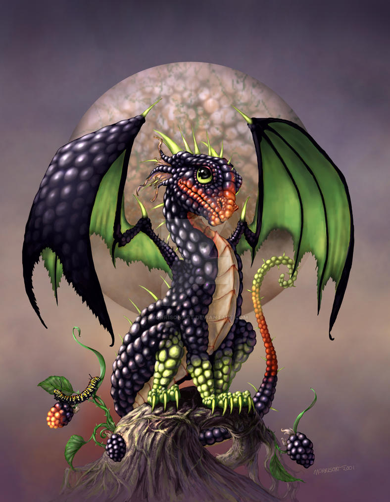 BLACKBERRY DRAGON by SMorrisonArt