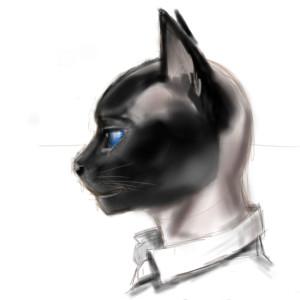 Fabien-Sokal's Profile Picture