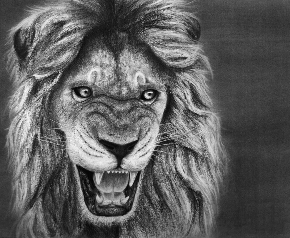 Lion by CarvinConcrete