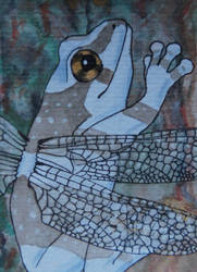 ACEO - The amazing flying frog by DarkGrungeWolf