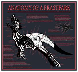 Frastfarkian Fleshchart by ThatsNotOk