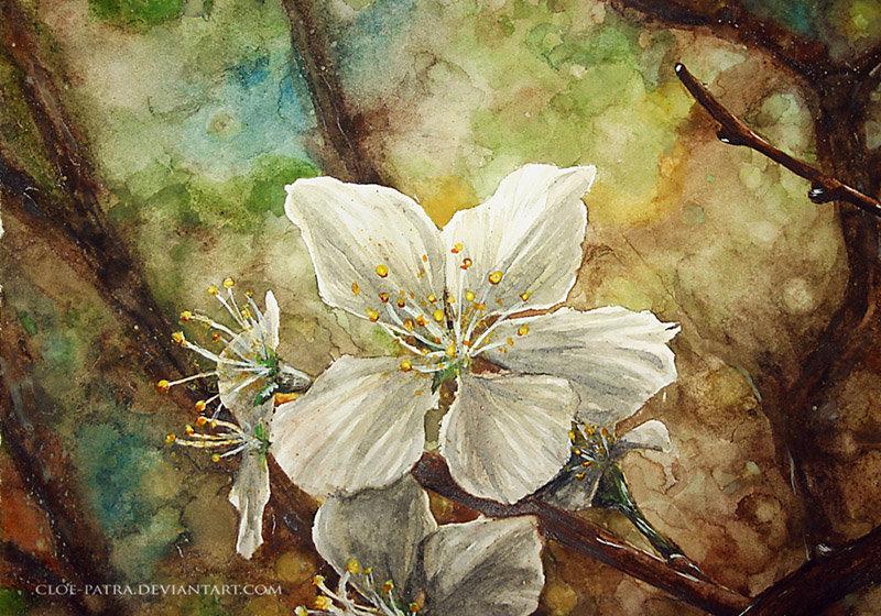 spring by cloe-patra