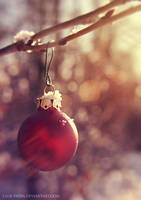 week5: last christmas