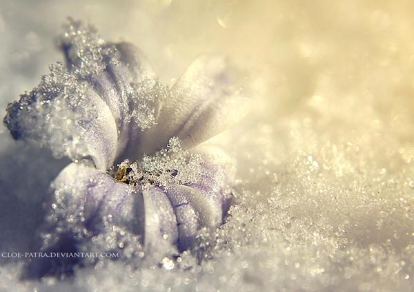 week8: breath of life by cloe-patra