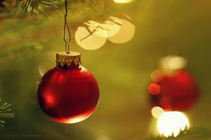 week51: Merry Christmas