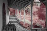 chinese garden IR