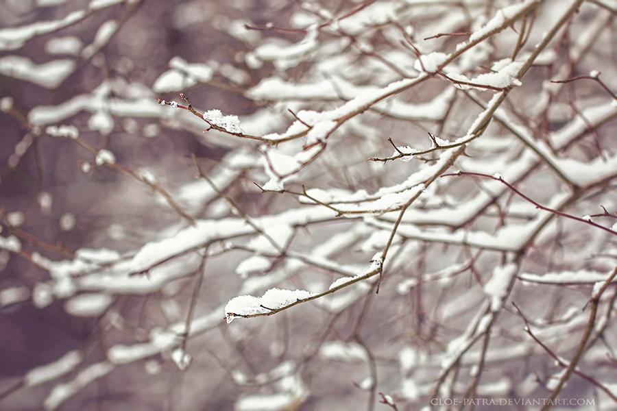 snowy afternoon by cloe-patra
