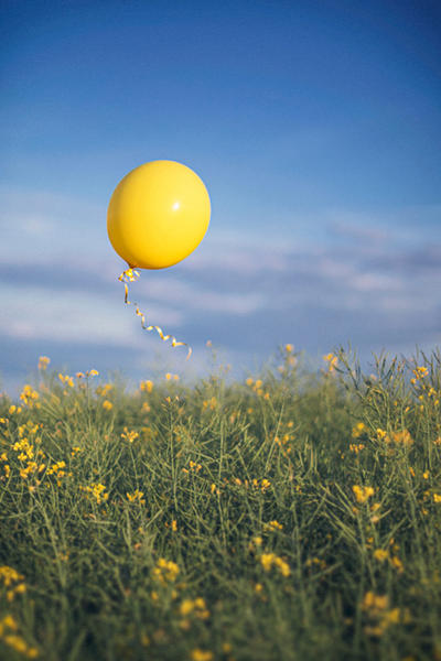 24.1 yellow by cloe-may