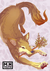 Flower Catcher by mnvulpin