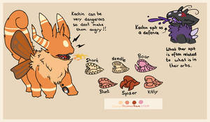 Kachin Mouth Guide (official)