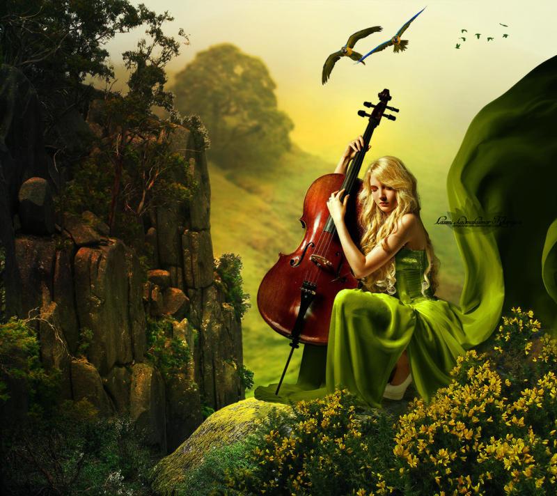 Melody by Laxmi-Arts