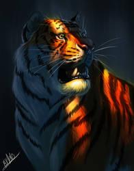 Tiger- Study