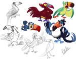 Toucan Designs