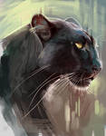 Panther Painting Study