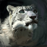 Snow Leopard Speed Painting by TehChan