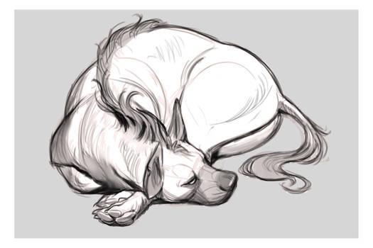 Sleepy Hyena
