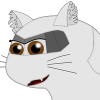 OMG i drew something           Cat Plane Windy