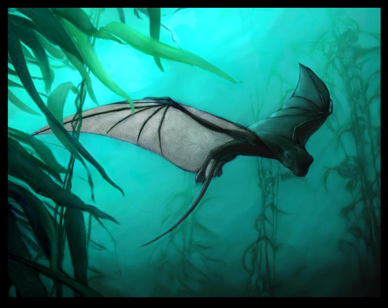 Bat Ray - BIO200 mid-t...