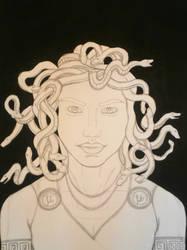 Work in Progress: Medusa