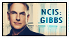 NCIS Jethro Gibbs by AlainaBrown